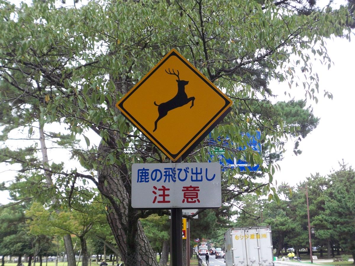 鹿飛び出し注意看板