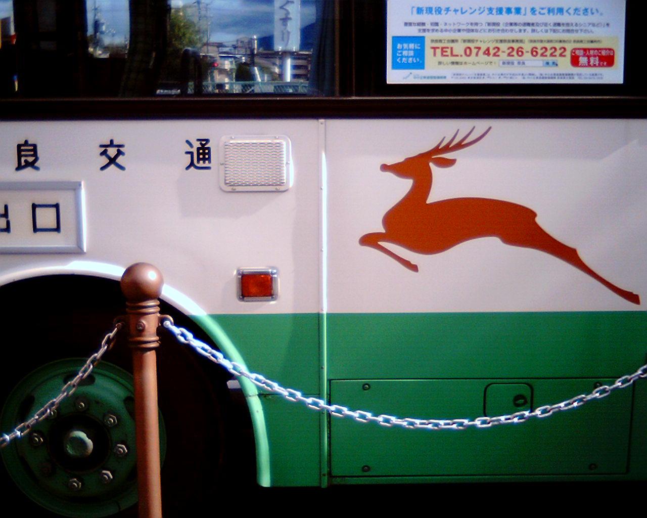鹿を見つける旅